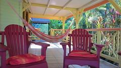 French West Indies #13 (escailler arthur) Tags: sun garden guadeloupe antilles deshaies antillais antillesfrançaises