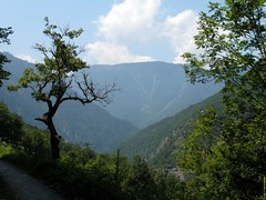 Orsieres - Martigny (12.07.13) 141 (rouilleralain) Tags: valais sembrancher valdentremont stbernardexpress bovernier viafrancigena