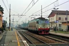 E652 109 (Luigi Basilico) Tags: milan electric italian cargo class locomotive bahn tigre fs stato trenitalia italiane dello bahnof ferrovie chiasso carimate baureihe e652 italianische