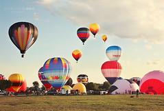 Oh, summer  (Jackie Rueda) Tags: carnival summer canada balloons quebec gatineau 2470mm summerfestival airballoons jackierueda canon5dmarkiii wwwjackieruedacom
