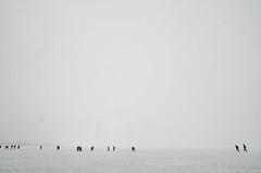 Lake Superior (waltzcore) Tags: wisconsin lakesuperior icecaves bayfield cornucopia seacaves