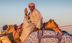 Deserts and Camels 131107 17_15_38 (Renzo Ottaviano) Tags: race al dubai desert united racing course emirates camel arab lorenzo races camels corrida emirate deserts uniti renzo unis arabi carrera corsa emirati unidos camellos chameaux rabes kamelrennen   arabes ottaviano camelos emiratos emirados vereinigte arabische cammelli emiratiarabiuniti mirats     marmoun
