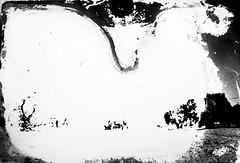 meteogrammi_010 (www.luigiredavide.com) Tags: meteogrammi ricerca materiali stampa fotografia biancoenero agentiatmosferici natura terra vento pioggia sole neve umidità rugiada nebbia polvere search materials printing photography blackandwhite weathering nature land wind rain sun snow humidity dew fog dust