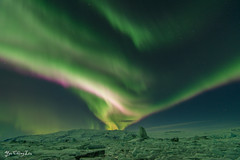 rare red aurora borealis (FollowingNature (Yao Liu)) Tags: rare redauroraborealis jökulsárlóniceberglagoon iceland glacier lagoon followingnature redaurora northernlights icelandphotos icelandphototrip icelandwinter icelandnorthernlights icelandwinterphotos icelandphotography snow icelandphotoswinter icelandphotographylocations
