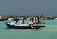 _DSC0275 (Giuseppe Cocchieri) Tags: sea mare boat barca pescherecci colore colori color harbor porto marinai fisherman t