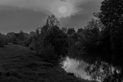fino alla fine (conteluigi66) Tags: monocromatico monocromo monochrome bn bw acqua water natura nature luigiconte