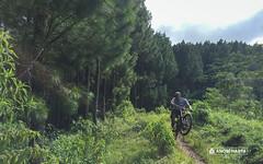 Jalur Asyik di Tunggangan (anomharyacom) Tags: malang jawatimur indonesia mountainbikingmalang mtbmalang gowesjelajahtunggangan mtbtunggangan mountainbikingbromo mountainbikingtrailbromo mountainbikingtrailtunggangan mountainbikingguidemalang mountainbiketourmalang mountainbiketourbromo mtbtourbromo mtbtourmalang