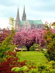 Un petit tour à Chartres (FloDL) Tags: chartres cathédrale jardin jardinjaponais lesjardinsdesakuraï printemps spring garden happyeaster joyeusespâques