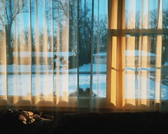 Faded From Winter (davelawrence8) Tags: vscocam iphone winter light shadow drapes curtains evening quiet michigan jackson 2017 iphoneography window