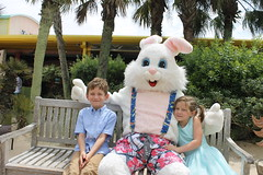 Easter Bunny 060