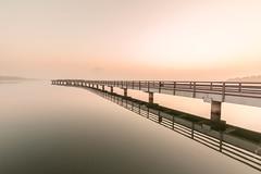 silence (svenru89) Tags: stille silent still ruhe water wasser brücke bridge seebrücke see lake sunset sonnenaufgang himmel sky nebel mist fog smoke early früh morgen morning day sachsenanhalt geiseltalsee silence