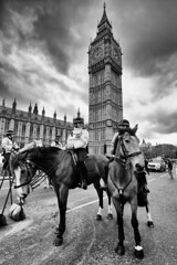 Westminster Police Horses (MKHardyPhotography) Tags: blackandwhite london westminsterattack distagont3518 mkhardyphoto mkhardy streetphotography westminster monochrome