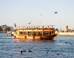 Dhow boat in Dubai (dawson_lauren) Tags: dubai middleeast boat water cruise dhow birds