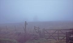 misty murky gate (Ron Layters) Tags: revidge mist murk thickfog gate footpathsign moorland tree lowvisibility badweather whitepeak peakdistrict warslow england derbyshire unitedkingdom slidefilmthenscanned slide transparency fujichrome velvia leica r6 leicar6 ronlayters
