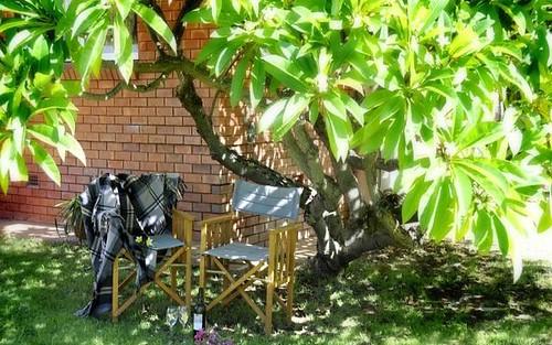 22 Abbott Street, Gunnedah NSW 2380