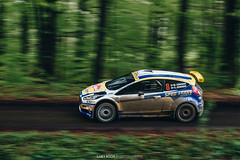 Rally Prešov 2017 (Luky Rych) Tags: rally prešov motrosport car forest panning fast speed exposure hill sky green tree trees wrc r5 ford skoda subaru mitsubishi lada citroen peugeot
