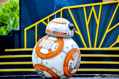 Star Wars: A Galaxy Far, Far Away (disneylori) Tags: bb8 theforceawakens starwarsagalaxyfarfaraway starwars disneycharacters characters hollywoodstudios waltdisneyworld disneyworld wdw disney