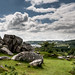 On Snappers Tor - Dartmoor_Nik-9698