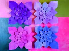 Hydrangea (ayako kobayashi) Tags: origami hydrangea shuzo fujimoto