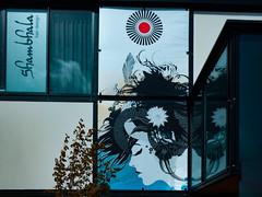 Shambala Hair Design (Steve Taylor (Photography)) Tags: shambalahairdesign feather art design streetart mural blue black red cool lady woman newzealand nz southisland canterbury christchurch cbd city window reflection