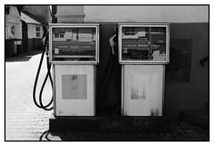 Jumelles... (DavidB1977) Tags: nikon d610 ais 35mm france alsace basrhin bw nb monochrome hunspach