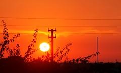 Tramonto tra pali e fili  - Marsala (dona(bluesea)) Tags: sky sunset sole sun marsala sicilia sicily italia italy