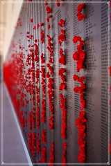 lest we forget (Alex Layzell) Tags: australian war memorial lest we forget campbell australiancapitalterritory australia australianwarmemorial anzac military sacrifice first world roll honour name atc