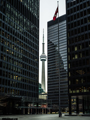 in between (urbanexpl0rer) Tags: toronto ontario canada cntower architecture buildings offices financialdistrict daytime framing x1d