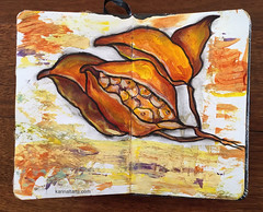 Drawing See A Pod (karinaltarts) Tags: drawing sketch travel journal pods seedpods seeitdrawit