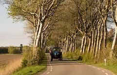 Allee (lotharmeyer) Tags: nature allee trees spring bäume fahrzeug traktor street frühling strasse trekker natur