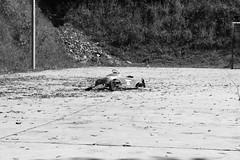 Bairro República JM - Wir Caetano - 08 04 2017 (5) (dabliê texto imagem - Comunicação Visual e Jorn) Tags: bairro república monlevade carro brinquedo