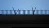 SAM_0360 copia (perezjoseluis62) Tags: antenas terrace terraza baranda