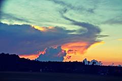 Phoenix (Ralaphotography) Tags: sunset landscape nature summer phoenix bird shape clouds colors magical evening walk forest