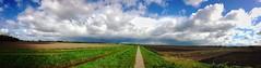 The path to the clouds (Jos Mecklenfeld) Tags: niederlande netherlands westerwolde terapel weg pad path wolken clouds landschap landschaft landscape appleiphone5c