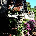 Wat Chedi Luang. วัดเจดีย์หลวง thumbnail
