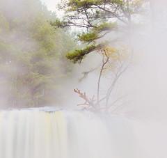 Steamy morning - Copy (joegilbreath) Tags: welti falls alabama cullman mist fog steam