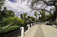lake at Budapest Zoo (szlavid) Tags: nikon d7000 tokina 1224 zoo budapest nature city urban landscape spring beautiful