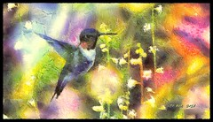 Picaflor y flores (Leo Bar) Tags: oilpainting colors compositing hummingbird textura texture pixinmotion nature birds leobar awardtree netartii