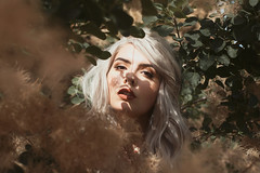 Secret in her shadows (aleah michele) Tags: story sad secret seek see emotion emotional eyes emerge empty explore emotive fairytale fantasy face flowers flower smokebush silverhair warm conceptual conceptualportrait concept calm color