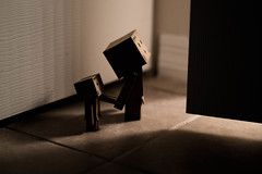 365.11--Let Us In... (Leijachan) Tags: toys beginner 50mm shoddy danbo danboard
