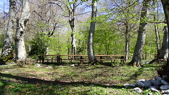 """P§paesaggio Rurale montano • <a style=""""font-size:0.8em;"""" href=""""http://www.flickr.com/photos/145300577@N06/34004697371/"""" target=""""_blank"""">View on Flickr</a>"""