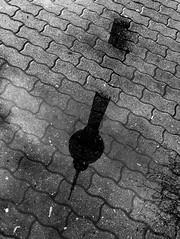 RainyDayz Tour in Berlin Mitte (ANBerlin) Tags: schwarzweis blackwhite biancoenero noiretblanc städtisch urban extraordinaryausergewöhnlich abstrakt abstract pfütze puddle alexanderplatz fernsehturm televisiontower mitte deutschland germany berlin anb030 shotoniphone iphotography iphonography 6splus iphone6s iphone apple