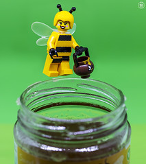 Honey to the Bee (jezbags) Tags: lego legos toys toy minifigure minifigures macrolego macro macrophotography macrodreams canon60d canon 60d 100mm closeup upclose bee honey flying collect