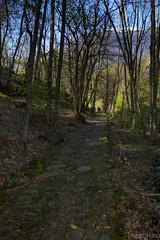 Montecrestese - Domodossola - 09.04.17-16 (Maurizio Piazzai) Tags: 090417 altoggio baita cai domodossola montecrestese verbania montagna