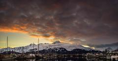 Sittin' in the mornin' sun (Traylor Photography) Tags: alaska spring sunrise cloudy reflection mountiains panorama sewardhighway boats sewardsmallboatharbor april seward unitedstates us