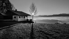 shadow (schneider-lein) Tags: carlzeiss zeissloxia2128 sun sunrise shadow blackwhite mono monochrome monotone schatten fog nebel landschaft landscape
