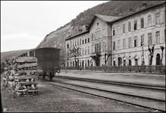 Leaving Romania (1903)