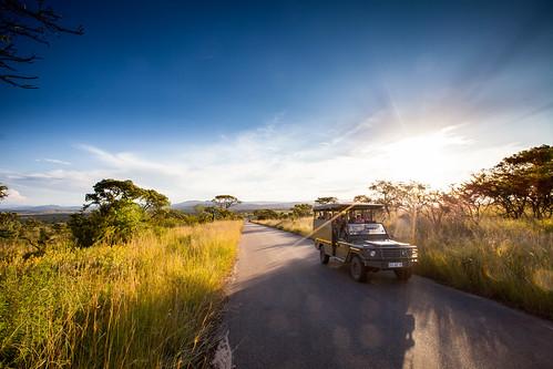 KrugerParkREIZ&HIGHRES-69