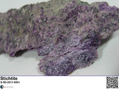 Stichtite (MIROFOSS) Tags: stichtite mineral carbonate violet purple science geology mineralogy crystal micro macro nature earth mirofoss