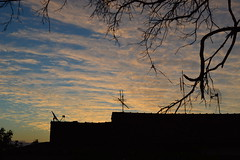 Texture of the sky (larissaarantesmathozo) Tags: minimalism twigs sky clouds urban urbano paisagem árvore céu peace landscape textura city trees